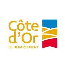 Election du Conseiller Départemental Jeunes 2020-2021